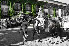 Vignes iconiques de Belmont Park photos stock