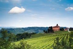 Vignes italiennes Images libres de droits