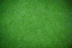 Vigneting green grass floor texture Stock Image