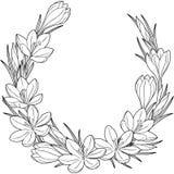 Vignett de la flor de la primavera de azafranes Elementos del vector aislados Imagen blanco y negro para la relajación adulta Ima stock de ilustración