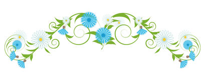 Vignette of cornflowers and daisies Stock Photos