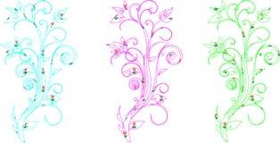 Vignette curls Stock Image