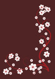 Vignette of the flowering branches. Blossoming cherry branches for  brown background Royalty Free Stock Photography