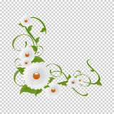 Vignette of flowers and greenery.Vector floral Stock Image