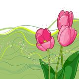 Vignette of outlined tulips and leaves on white Royalty Free Stock Photos