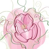 Vignette of outlined tulips and leaves on white Stock Image