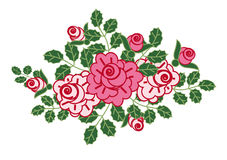 Vignette of roses. Pink roses with leaves and buds Stock Images
