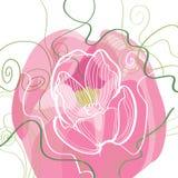 Vignette von umrissenen Tulpen und von Blättern auf Weiß Stock Abbildung