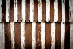 Vignette zebra pattern boards Royalty Free Stock Photo