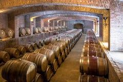 Vignoble d'Undurraga - Santiago, Chili photographie stock libre de droits