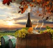 Vignoble dans le chianti, Toscane photographie stock