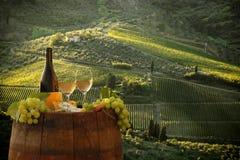 Vignoble dans le chianti, Toscane image stock