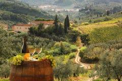 Vignoble dans le chianti, Toscane photo stock