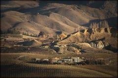 Vignoble de difficulté de Mt, Cromwell, Otago central, Nouvelle-Zélande Photographie stock