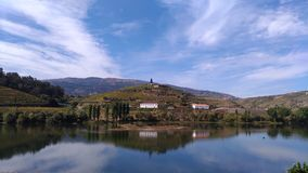 Vignoble de Douro Photographie stock