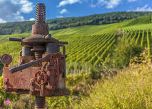 Vignoble de la Moselle et machine d'agriculture de vigne d'antiquité Photographie stock