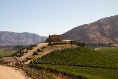 Vignoble de Santa Cruz, Chili photo libre de droits