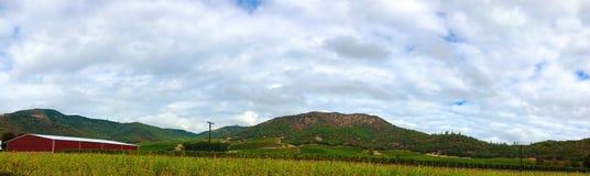 Vignoble du sud de l'Orégon images stock