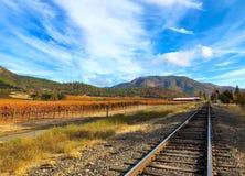 Vignoble du sud de l'Orégon en automne photographie stock libre de droits