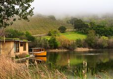 Vignoble paisible dans Napa Valley photo stock