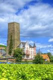 Vignoble près de forteresse médiévale Boosenburg de château dans Ruedesheim, Hesse, Allemagne photographie stock