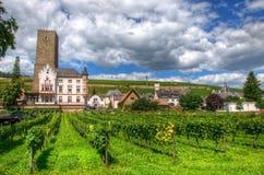 Vignoble près de forteresse médiévale Boosenburg de château dans Ruedesheim, Hesse, Allemagne image stock