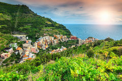 Vignoble spectaculaire et vieille ville de Manarola, Italie, l'Europe photo libre de droits