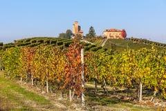 Vignobles colorés dans Piémont, Italie Photographie stock