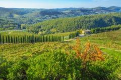 Vignobles dans le chianti Toscane Photographie stock