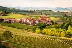 Vignobles de Barolo photos libres de droits