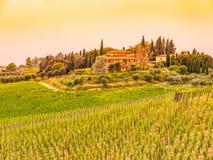 Vignobles de chianti Coucher du soleil chaud dans le beau paysage toscan, Italie images libres de droits