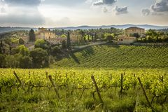 Vignobles de chianti en Toscane, Italie Photos stock