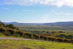 Vignobles de Napa Valley Photo stock
