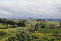 Vignobles en Toscane Photo stock