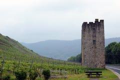 Vignobles en vallée de la Moselle, Allemagne image stock