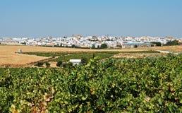 Vignobles et ville, Montilla image libre de droits