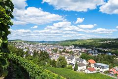 Vignobles le long de la rivière de la Moselle photographie stock