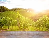 Vignobles le long de la route du sud de vin de Styrian en automne, Autriche l'Europe image stock