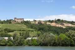 Vignobles par la rivière le Rhône, France Photos stock