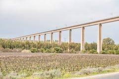 Vignobles près de Vredendal Image stock