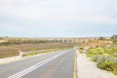 Vignobles près de Vredendal Photo libre de droits