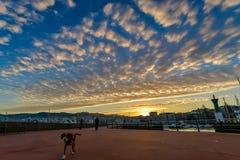 Vigo Port på soluppgång - Vigo Arkivfoto