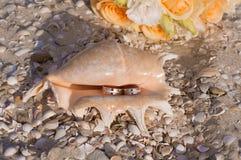 Vigselringar i ett skal på stranden Arkivfoto