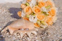 Vigselringar i ett skal på stranden Royaltyfri Fotografi