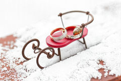 Vigselringar i snön Royaltyfri Bild