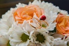 Vigselringar ligger på en bukett av orange rosor och vitfärger nyckelpiga 02 Royaltyfri Foto