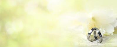 Vigselringar med mjuk vårbakgrund arkivfoton