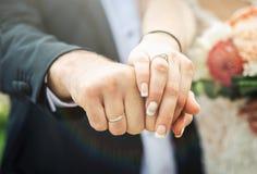 Vigselringar och händerna av brudgummen och bruden Arkivbild