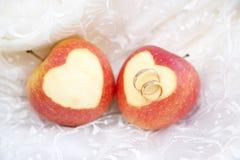Vigselringar på äpplen Arkivfoto