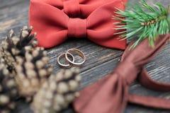 Vigselringar på brudgumbandet royaltyfri bild
